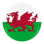 Welsh Flag Badge - Flag of Wales Button Isolated on White